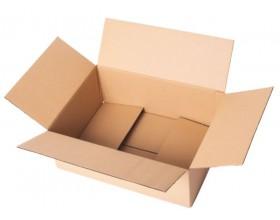 Karton klapowy 320x220x110mm 3W_22490