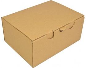 Karton fasonowy 220x170x100mm 3w brązowy_23197