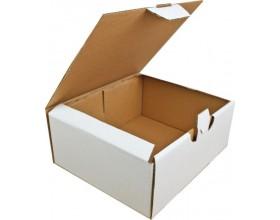Karton fasonowy 250x210x100 3w biały_23210