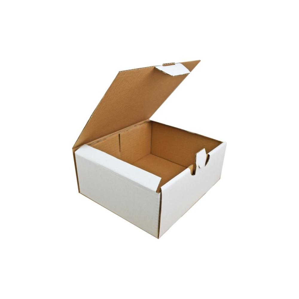 Karton fasonowy 250x210x100 3w biały