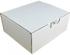 Karton fasonowy 250x210x100 3w biały_23211