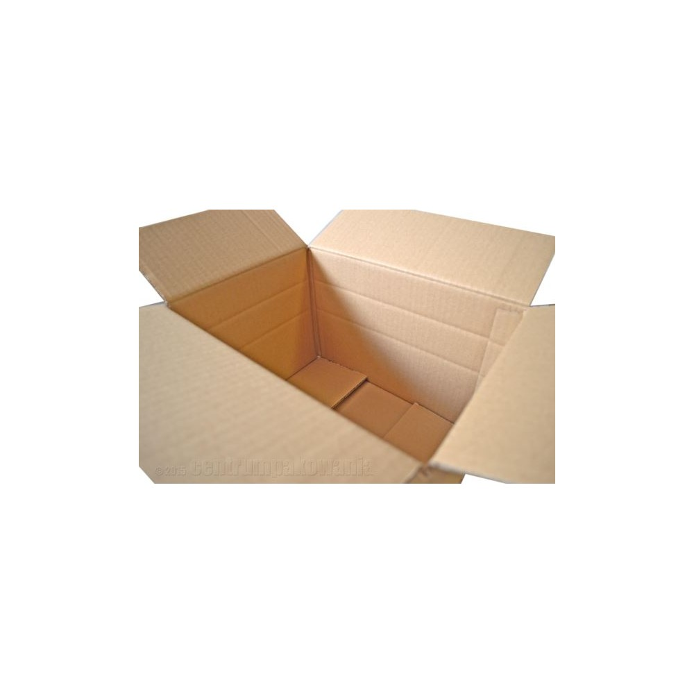 Karton klapowy 310X220X100/150/200mm 3W