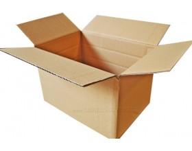 Karton klapowy 310X220X100/150/200mm 3W_23780