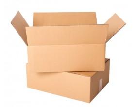 Karton klapowy 250x200x100mm 3W/B400g_24200