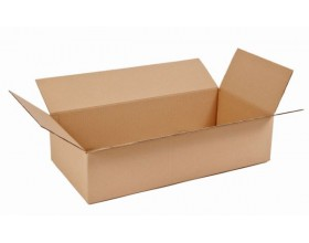 Karton klapowy 400x300x100mm 3W/C450g_24244