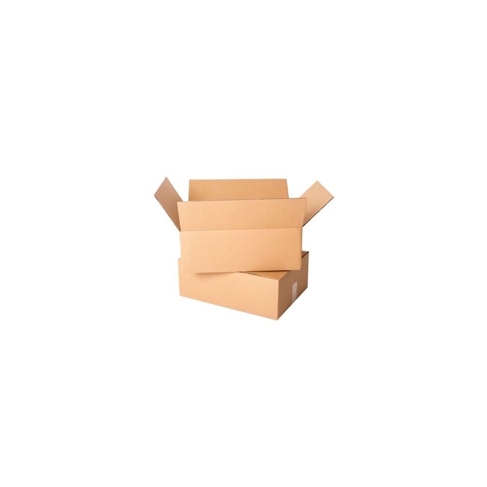 Karton klapowy 300x200x100mm 3W/B400g